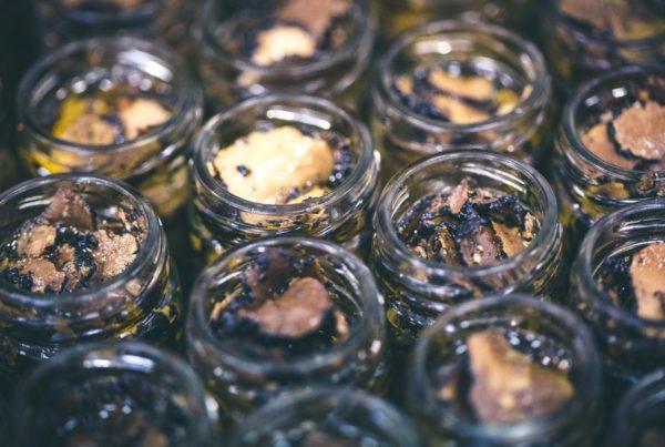 conservazione tartufo fresco