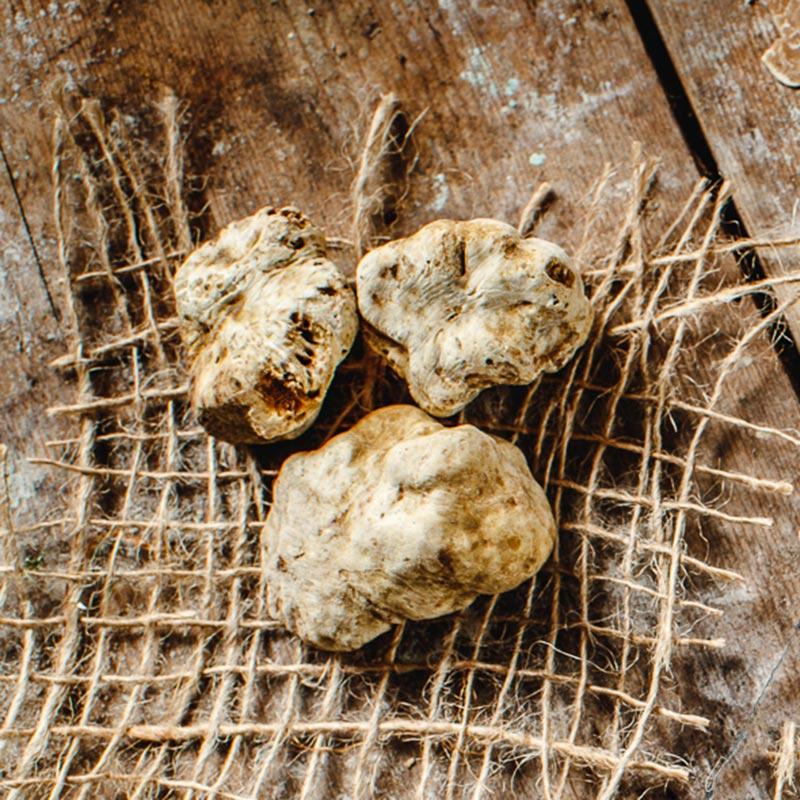La Cerca tartufo bio